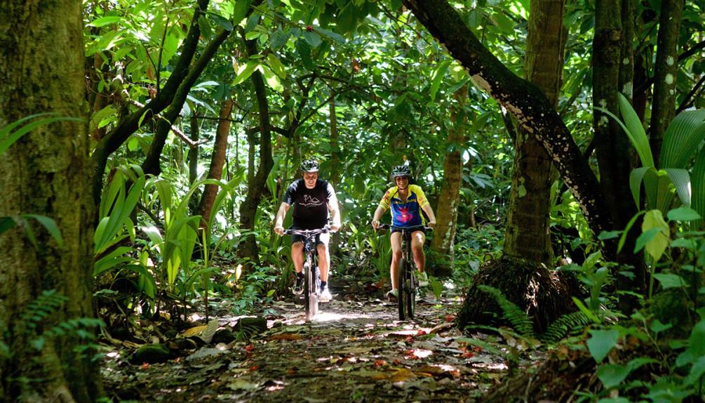 jungle_biking