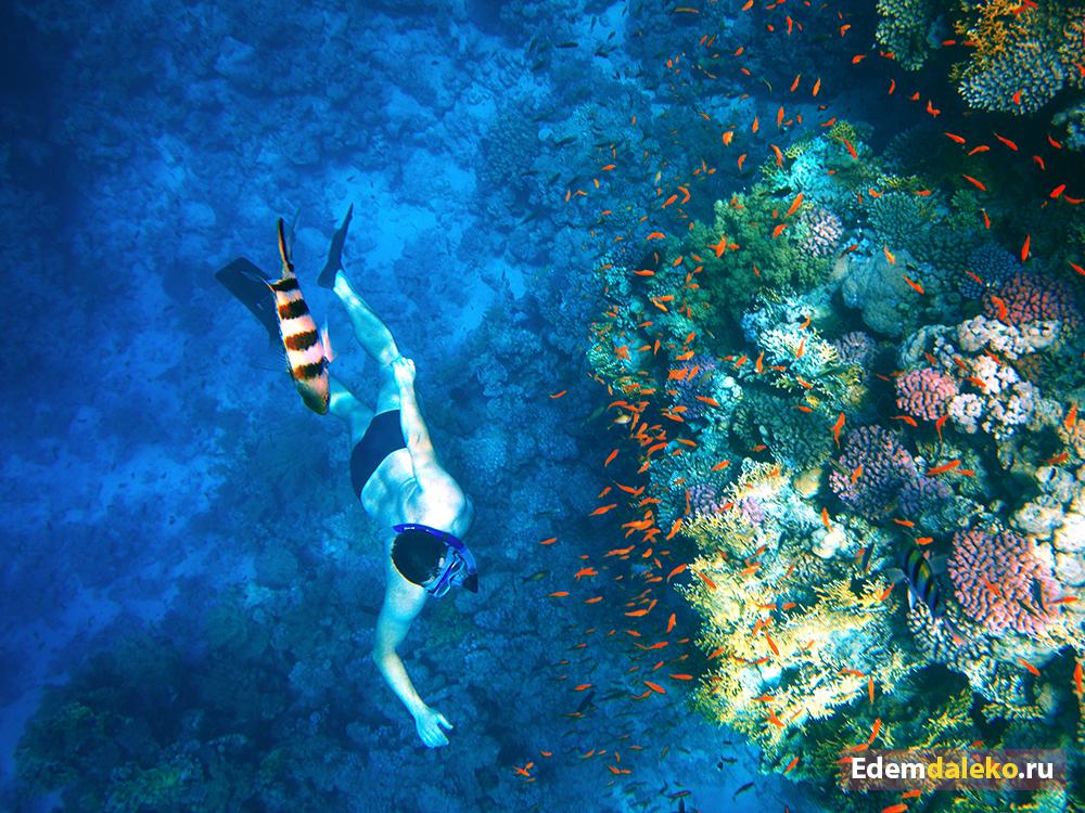 underwater edemdaleko